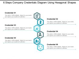 6 Steps Company Credentials Diagram Using Hexagonal Shapes
