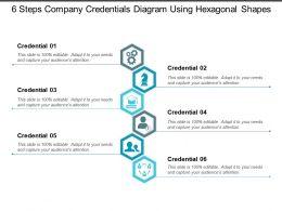 6_steps_company_credentials_diagram_using_hexagonal_shapes_Slide01