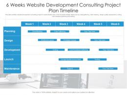 6 Weeks Website Development Consulting Project Plan Timeline