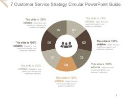 7 Customer Service Strategy Circular Powerpoint Guide