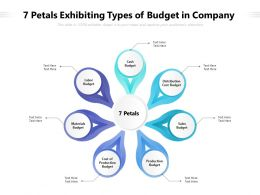 7 Petals Exhibiting Types Of Budget In Company