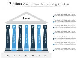 7 Pillars Visual Of Machine Learning Selenium Infographic Template