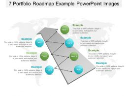 7 Portfolio Roadmap Example Powerpoint Images