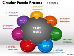 7 Stages Circular Puzzle Process