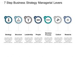 7 Step Business Strategy Managerial Levers