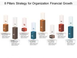 8 Pillars Strategy For Organization Financial Growth