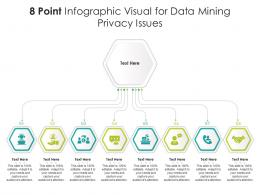 8 Point Infographic Visual For Data Mining Privacy Issues Template