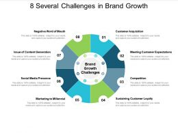 8 Several Challenges In Brand Growth
