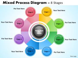 8 Stages Mixed Process Diagram For Business