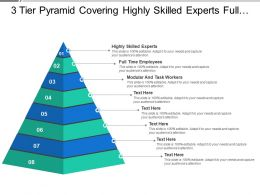 8 Tier Pyramid Covering Highly Skilled Experts Full Time Employees And Modular Workers