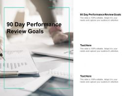 90 Day Performance Review Goals Ppt Powerpoint Presentation Styles Background Designs Cpb