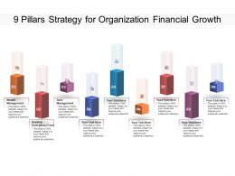 9 Pillars Strategy For Organization Financial Growth
