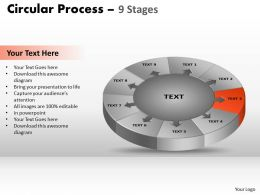96346462 Style Puzzles Circular 9 Piece Powerpoint Presentation Diagram Infographic Slide
