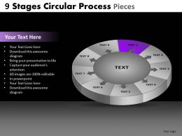 9 Stages Circular Process Pieces Powerpoint Slides And Ppt Templates DB