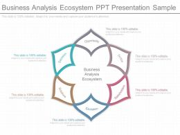 A Business Analysis Ecosystem Ppt Presentation Sample