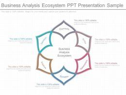 A Business Analysis Ecosystem Ppt Presentation Sample