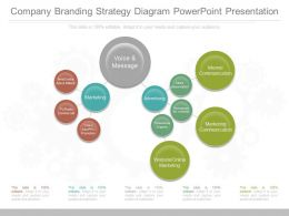 A Company Branding Strategy Diagram Powerpoint Presentation