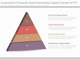 A Components Of Corporate Social Responsibility Diagram Example Of Ppt