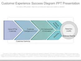 A Customer Experience Success Diagram Ppt Presentation