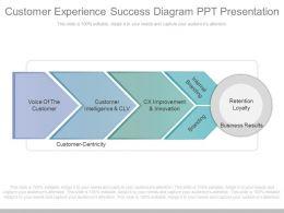 A Customer Experience Success Diagram Ppt Presentation