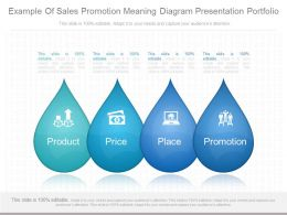 A Example Of Sales Promotion Meaning Diagram Presentation Portfolio