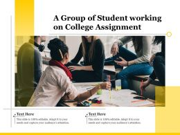 A Group Of Student Working On College Assignment
