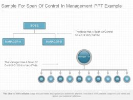 A Sample For Span Of Control In Management Ppt Example