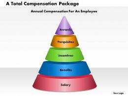 A Total Compensation Package powerpoint presentation slide template
