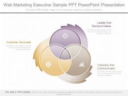 A Web Marketing Executive Sample Ppt Powerpoint Presentation