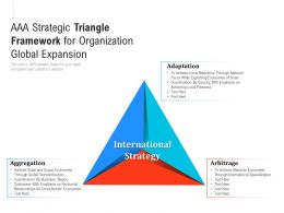 AAA Strategic Triangle Framework For Organization Global Expansion