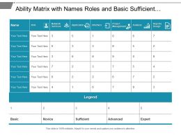 Ability Matrix With Names Roles And Basic Sufficient Expert Skills