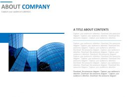 About Company Detail Introduction PowerPoint Slides