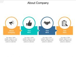 About Company Ppt Powerpoint Presentation Infographics Structure Cpb