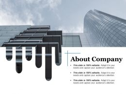 About Company Ppt Styles Format Ideas