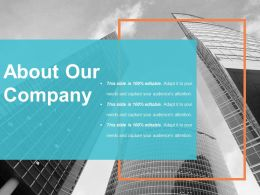 About Our Company Ppt Examples Slides