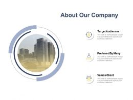 About Our Company Ppt Powerpoint Presentation File Template