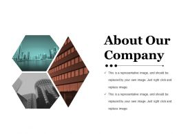 About Our Company Ppt Sample