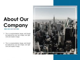About Our Company Ppt Slide Styles