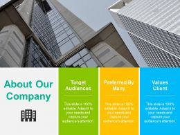 About Our Company Ppt Summary Format Ideas