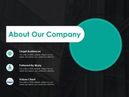 About Our Company Ppt Summary Themes