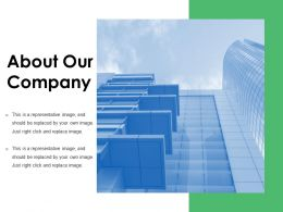 About Our Company Presentation Examples
