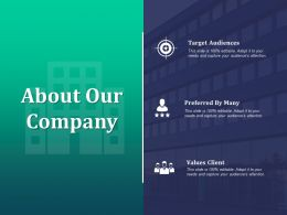 About Our Company Target Audiences C386 Ppt Powerpoint Presentation Slides Picture