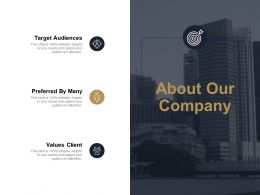 About Our Company Target Audiences Ppt Powerpoint Presentation Diagram Graph Charts