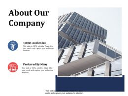 About Our Company Target Audiences Ppt Summary Infographic Template