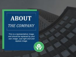 About The Company Ppt Files