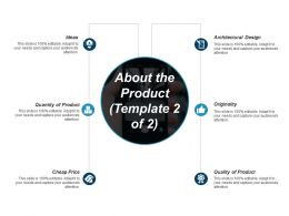 About The Product Ppt Summary Example Introduction