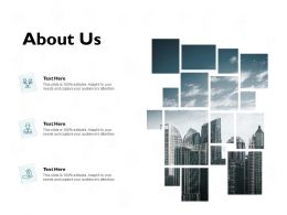 About Us Company B203 Ppt Powerpoint Presentation Diagram Ppt