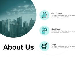 About Us Our Company Target E253 Ppt Powerpoint Presentation File Rules