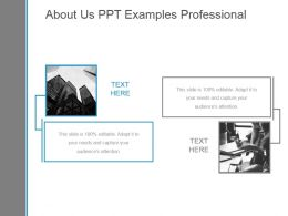 About Us Ppt Examples Professional