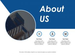 About Us Product Market Mapping Ppt Infographic Template Samples